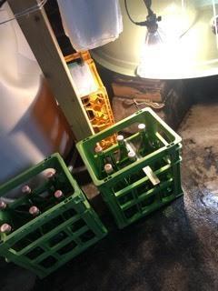 「純米吟醸うすにごり」タンク直汲み - 日本酒biyori