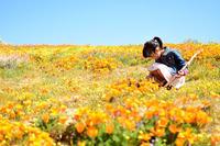 Antelope Valley California Poppy Reserve* - Avenue No.8