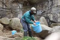 よこはま動物園ズーラシア2019年3月21日その2 - お散歩ふぉと2