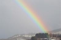 ザ、ザッと降って、パッと晴れて虹出て、白鳥が舞い降りる・・・ - 長女Yのつれづれ記