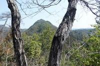 静かなる山高木山 (344M)     登頂 編 - 風の便り
