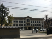京都 桜開花宣言 - 京都西陣 小さな暮らし