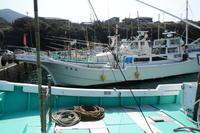 阿古漁港 - 三宅島風景