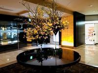 春先取り 人間ドック後のシェラトン都ホテル大阪のビュッフェランチ - journey