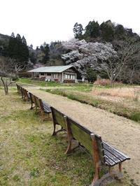 続々つぼみ、果実の名残 - 千葉県いすみ環境と文化のさとセンター