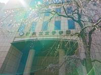 産後の本番復帰 - ピアニスト&ピアノ講師 村田智佳子のブログ