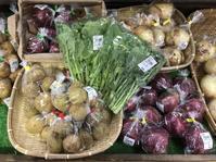 大洗まいわい市場  春野菜続々入荷しております! - わいわいまいわい-大洗まいわい市場公式ブログ