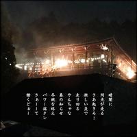 奈良の春は夜中から - すくえあのーと