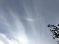 虹を見る人 - みかん山から(アイワ研究会)