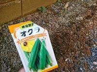 オクラの種まき - NATURALLY
