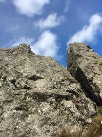 巨石の芸術、ヤギの形でしかねえ? - イギリス ウェールズの自然なくらし