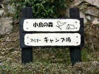 「小鳥の森キャンプ場」もうすぐオープン! - うつくしき日本