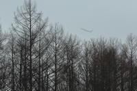 朝靄の中を~旭川空港~ - 自由な空と雲と気まぐれと ~from 旭川空港~