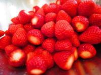 苺のアイスクリーム - 手料理 西天満いがらしの「楽しい味」