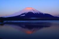 31年3月の富士(20)山中湖の日の出の富士 - 富士への散歩道 ~撮影記~