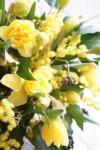 ディプロマコースが人気ですが… - お花に囲まれて