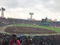 阪神甲子園球場 中央特別自由席 - あらびき