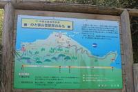 雪割草が群生する奥能登「猿山」を訪ねて - 野山の花たち