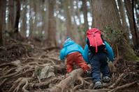 3歳のチャレンジ登山「陣馬山」 - Full of LIFE