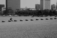 皇居前広場 - Taro's Photo