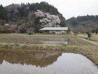 楽しいディキャンプ/さとのかぜNO.201号発行 - 千葉県いすみ環境と文化のさとセンター