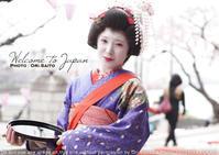 曇天こそ桜!てことで今年の桜フォトレッスンは芸妓さんもコミコミ sony α7RIII + SEL55F18Z 作例 - 東京女子フォトレッスンサロン『ラ・フォト自由が丘』-カメラとレンズとテーブルフォトと-