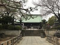 護国寺で懇親茶会 - あの日、あの時、あの場所で