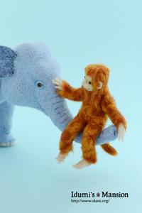 ゾウさん と おサル * Elephant&Monkey - … いづみのつぶやき