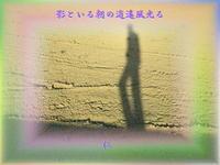 フォト575『影といる朝の逍遙風光る』zqx2701 - 老仁のハッピーライフ