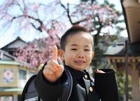 入学記念写真桜ロケ - 酎ハイとわたし