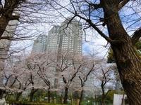 西新宿界隈散歩 - ソーニャの食べればご機嫌