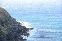 西風に - 三宅島風景