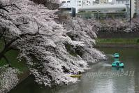 桜の季節も…EOS M3 - I LOVE Half Size Camera