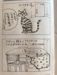 猫マンガ   猫の主張 - ~メインクーンと一緒~デナちな日々