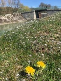 夏時間の日曜日にピクニック - ブルゴーニュ田舎便り