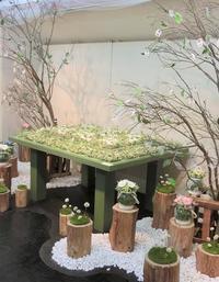 奈良へ - Bloom のんびり日記