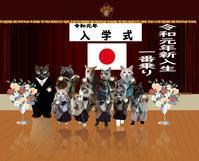 令和元年、一番乗り - ぎんネコ☆はうす
