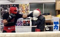 練習ースパーリングー練習 - 本多ボクシングジムのSEXYジャーマネ日記