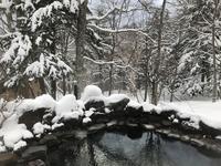 【生中継】雪の露天風呂♪ 朝寝 朝酒 朝湯をやってみた。 - よく飲むオバチャン☆本日のメニュー