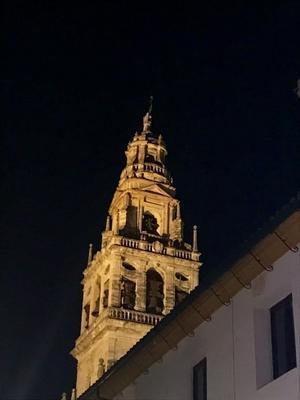 コルドバ旅行記4:夜景とマラガの大衆食堂 - ハギスはお好き?
