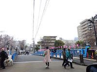 日曜日の目黒川 - マイニチ★コバッケン