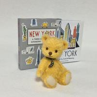 NEW YORK - Snowflake*
