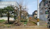 敷地内同居 - 小宮山建築通信