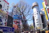 4月2日㈫の109前交差点 - でじたる渋谷NEWS