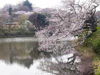三ツ池公園 - 岩月澄子-時の欠片を拾い集めて・・・