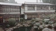 雪の高野山と桜の慈尊院 - 両備高速観光ブログ