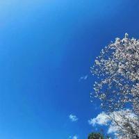 4月♪エネルギーの変化に向けて✨ - ヨガスタジオAzul