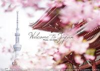 女子フォトショップ現像前現像後。桜と浅草宝蔵門とスカイツリーと。sony α7RIII + SEL55F18Z 作例 #Photoshop - 東京女子フォトレッスンサロン『ラ・フォト自由が丘』-カメラとレンズとテーブルフォトと-