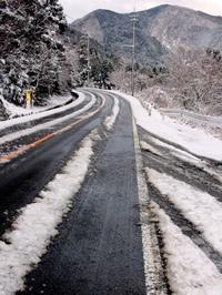 春雪梅花・・・R367の「雪と桜」前線 - 朽木小川より 「itiのデジカメ日記」 高島市の奥山・針畑からフォトエッセイ
