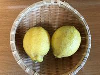 塩レモンを作ります、レモンの花が開きました。 - 青山ぱせり日記